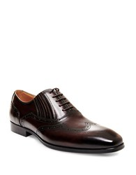 Steve Madden Masque Wingtip Leather Oxfords Brown