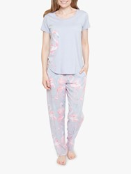 Cyberjammies Zara Flamingo Short Sleeve Pyjama Set Grey Pink