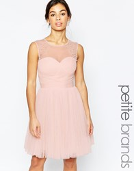 Little Mistress Petite Embellished Prom Dress Nude