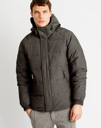 Selected Iconic Down Jacket