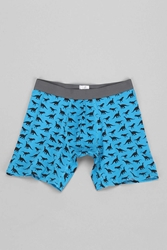 Urban Outfitters Dinosaurs Boxer Brief Teal