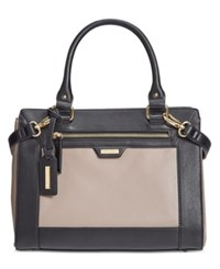 Tignanello Framed Perfection Convertible Leather Satchel Mushroom Black