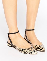Asos Lollipop Pointed Ballet Flats Leopard Multi