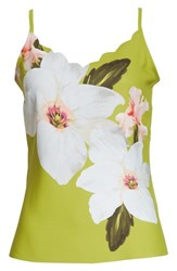 Ted Baker London Chatsworth Scalloped Camisole Light Green