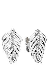 Pandora Design Women's Pandora 'Shimmering Feathers' Stud Earrings Sterling Silver Clear