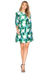 Blaque Label Fit And Flare Dress Green