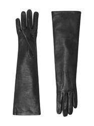 Burberry Long Silk Lined Lambskin Gloves Black