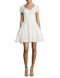 Nue By Shani Solid Fit And Flare Lace Dress Ivory