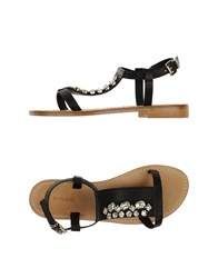 Pinko Footwear Sandals Women Black