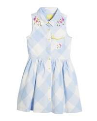 Joules Gabrielle Gingham Embroidered Dress Size 3 10 Blue