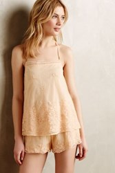 Eloise Apricot Mesh Camisole Tangerine