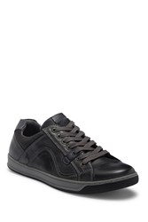 Steve Madden Chater Lace Up Sneaker Dark Grey