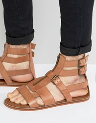 Asos Gladiator Sandals In Tan Leather With Zip Tan