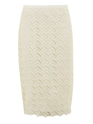 Nougat London Lace Pencil Skirt Cream