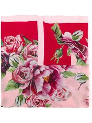 Dolce And Gabbana Peonie Print Scarf Pink And Purple