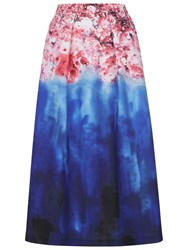 Damsel In A Dress Cherry Bloom Skirt Print