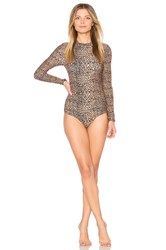 Amuse Society Tristen One Piece Brown