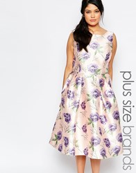 Chi Chi Plus Chi Chi London Plus Sleeveless Midi Prom Skater Dress In Floral Print Multi