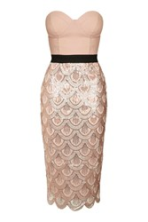 Scallop Sequin Bustier Midi Dress By Rare Rose Gold