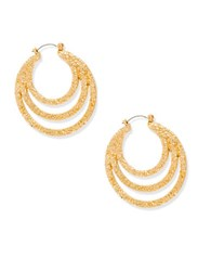 Steve Madden Layer Textured Hoop Earrings Gold