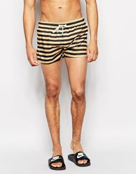 Oiler And Boiler Champion Shortie Swim Shorts Black