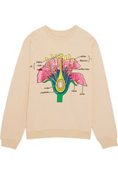 Christopher Kane Botanical Embroidered Cotton Jersey Sweatshirt Antique Rose