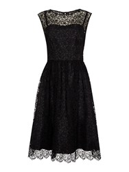 Untold Broderie Lace Fit And Flare Dress Black