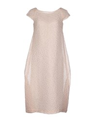 Rose' A Pois Dresses Knee Length Dresses Women Light Pink