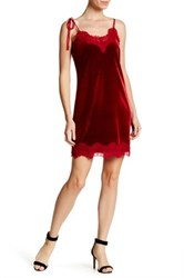 Whyte Eyelash Velvet And Lace Dress Red