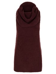 Jaeger Laboratory Cowl Neck Tunic Top Bordeaux