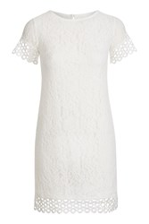 Rare Lace And Trim Mix Shift Dress By Cream