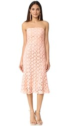 Shoshanna Franklin Midi Dress Blush