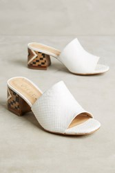 Anthropologie Vicenza Embossed Leather Mule Sandals White