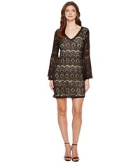 Scully Carey Lace Dress Nude Lining Black Women's Dress
