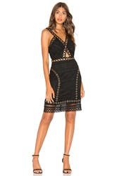 Endless Rose Lace And Grommet Dress Black