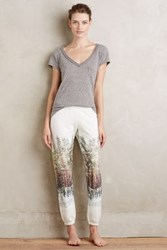 Anthropologie Woodland Joggers Blue