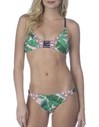 Sperry Tropical Tendencies Bikini Top Green