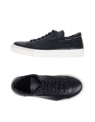 The Last Conspiracy Sneakers Dark Blue