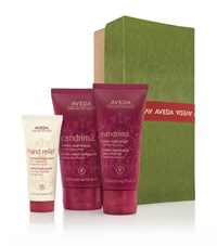 Aveda A Gift Of Warm Moments Unisex