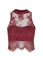 Sweetheart Lace Crop Top By Glamorous Burgandy