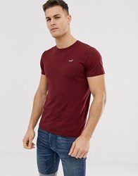 Hollister Crew Neck Seagull Logo T Shirt In Burgundy Red
