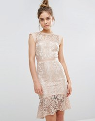 Paper Dolls Peplum Hem Lace Dress Taupe Nude Pink