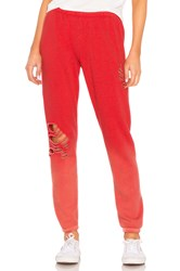 Wildfox Couture Trashed Knox Pant Red