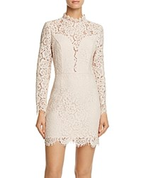 Aqua Illusion Lace Cocktail Dress Blush