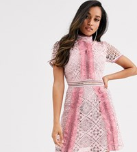 True Decadence Petite Ruffle Front Mini Dress With Contrast Lace In Pink
