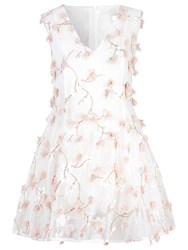 True Decadence Mesh 3D Floral Skater Dress White