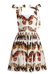 Dolce And Gabbana Butterfly Print Cotton Poplin Mini Dress Brown White