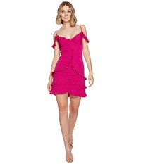 Nicole Miller Stella Party Dress Very Berry Women's Dress Pink