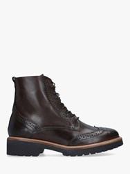 Carvela Snail Lace Up Leather Ankle Boots Dark Brown