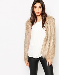Traffic People Shaggy Faux Fur Jacket Feathergrey